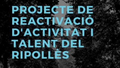 Projecte de reactivació industria del Ripollès